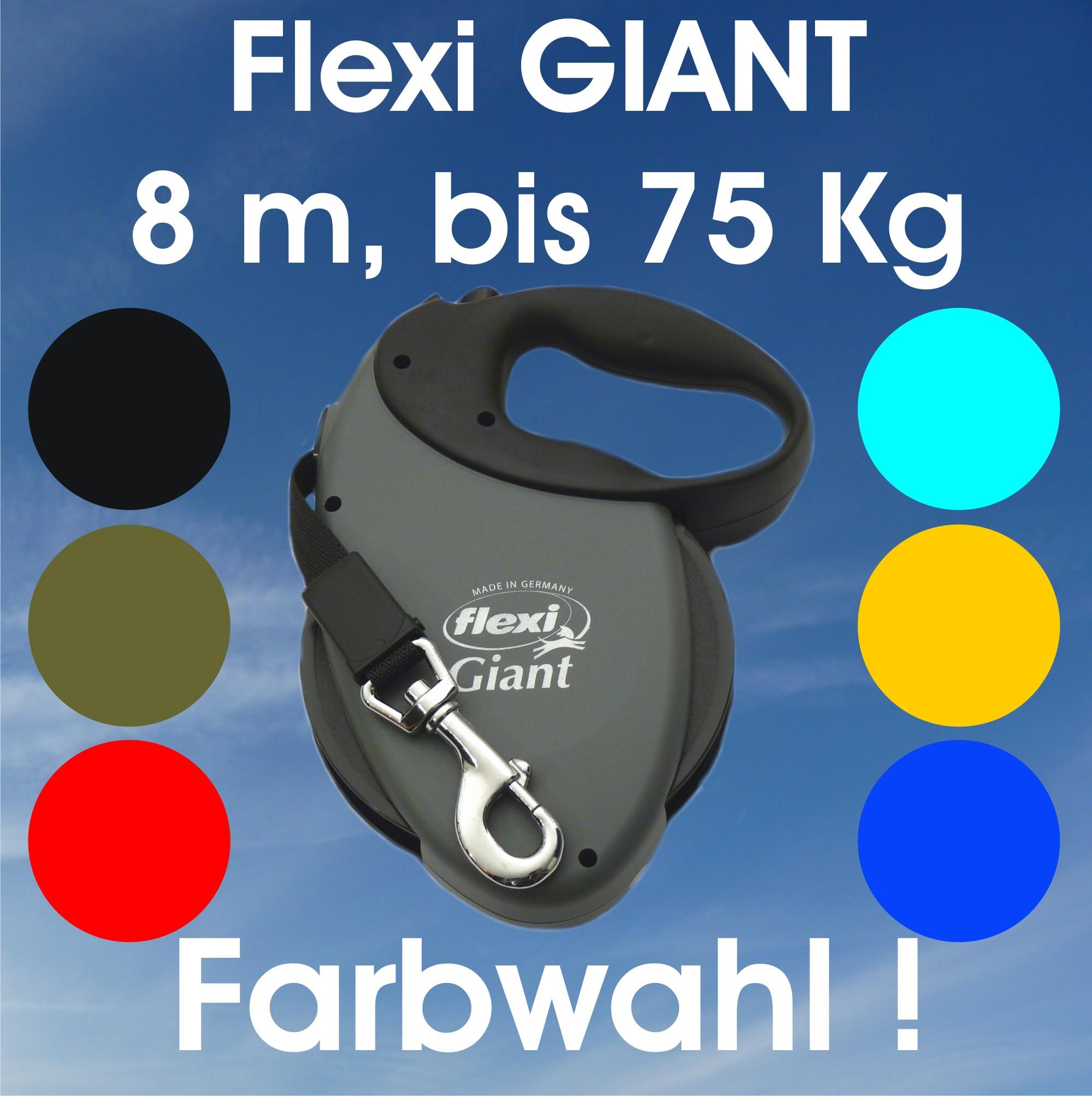 Flexi Giant 8m
